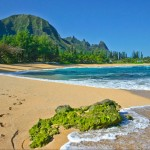Great beaches for shelling, sunbathing and exploring